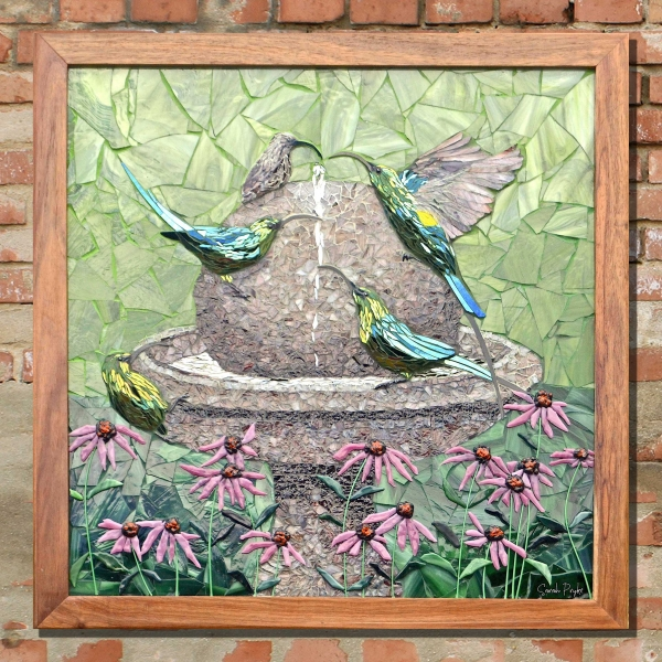 Sarah-Pryke—Sunbirds-at-bird-bath