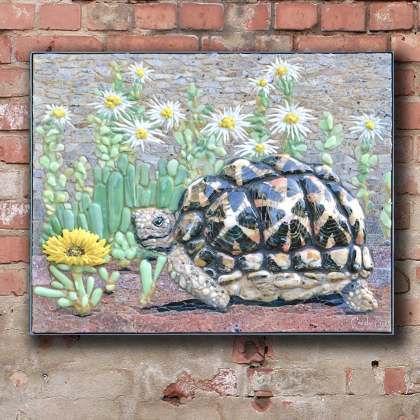 Sarah-Pryke-tent-tortoise-with-succulents