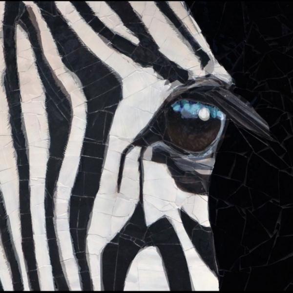 zebra-face-copy