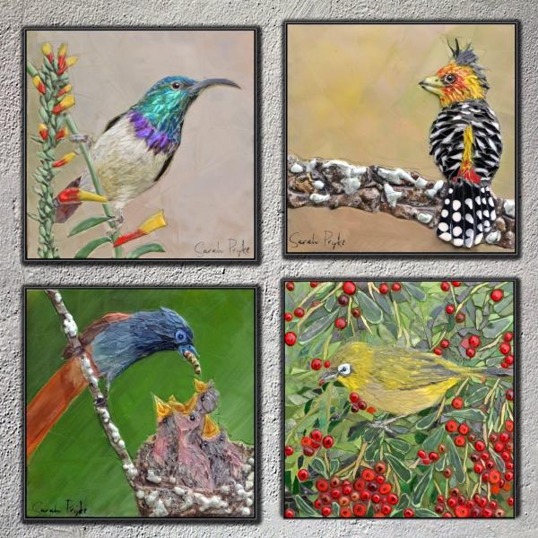 bird-composition