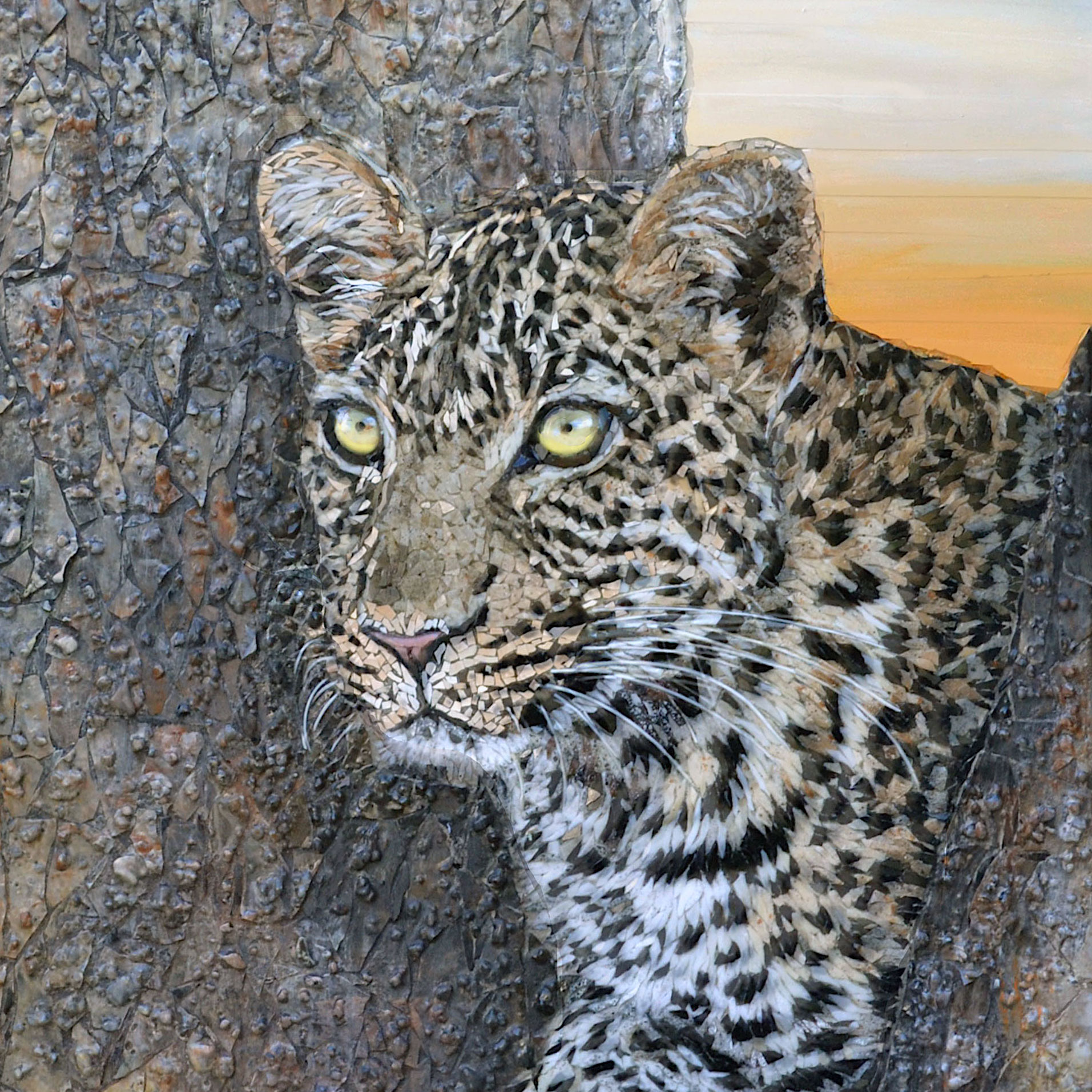 Sarah-Pryke---leopard